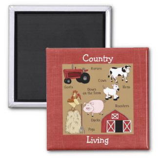 Land-Küchen-Sammlungs-Vieh-Magnet Quadratischer Magnet
