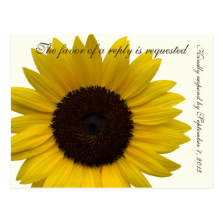 Land-Sonnenblume UAWGwartekarte Postkarte