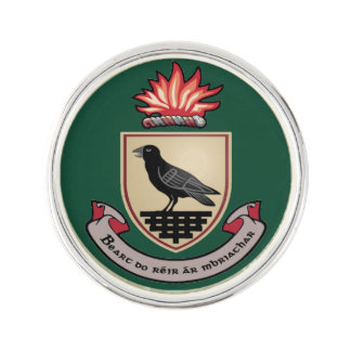 Landkreis-Dublin-Revers-Button Anstecknadel
