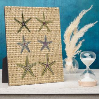 Landleinwandstrand-Chic Starfish des Seashell Fotoplatte
