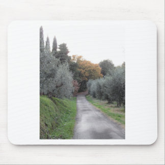 Ländliche Landschaft mit Asphaltstraße im Herbst Mousepad