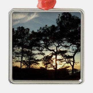 Landschaft des Torrey Kiefern-Sonnenuntergang-II Quadratisches Silberfarbenes Ornament