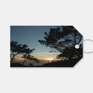 Landschaft des Torrey Kiefern-Sonnenuntergang-III Geschenkanhänger