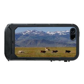 Landschaft Kaliforniens HWY 395 Incipio ATLAS ID™ iPhone 5 Hülle