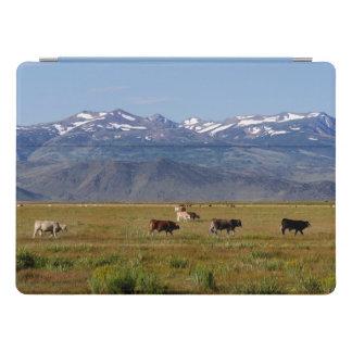 Landschaft Kaliforniens HWY 395 iPad Pro Cover