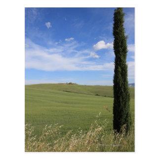 Landschaft mit Zypresse Postkarte