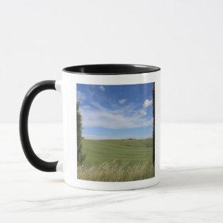 Landschaft mit Zypressen 2 Tasse
