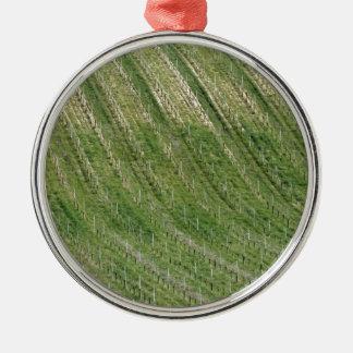 Landschaftliche Ansicht des Rollenabhangs mit Silbernes Ornament