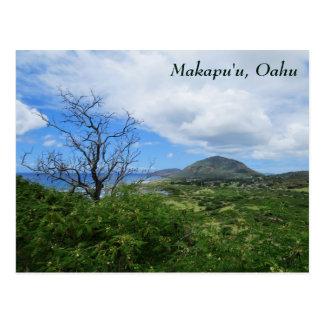 Landschaftliche Makapuʻu Oahu Hawaii Postkarte