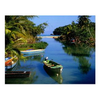 Landschaftlicher Fluss nahe Ocho Rios in Jamaika Postkarte