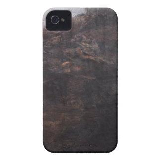 Landschaftsbucht iPhone 4 Hüllen