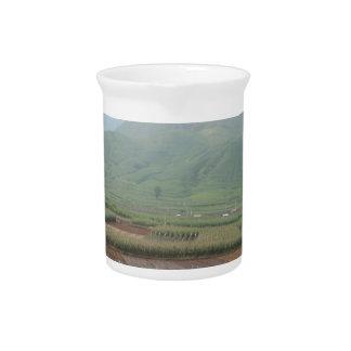 Landschaftsgrasgebirgshimmelland Getränke Pitcher