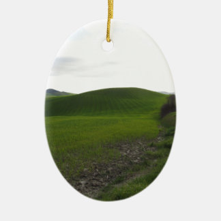 Landstraße über dem Rollen der grünen Hügel und Keramik Ornament