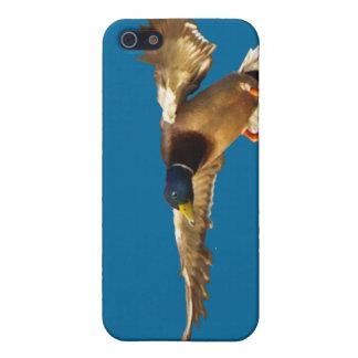 Landungs-Stockenten-Enten-Tier-Liebhaber iPhone iPhone 5 Schutzhülle