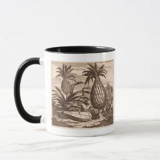 Landwirtschaft der großen Ananas, Illustration von Tasse