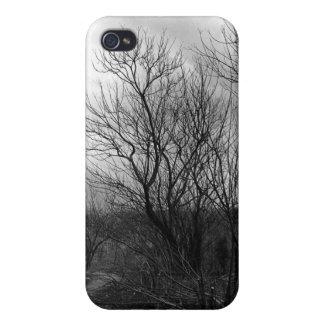 Lang und Wicklungs-Straße iPone Speck-Kasten iPhone 4 Case