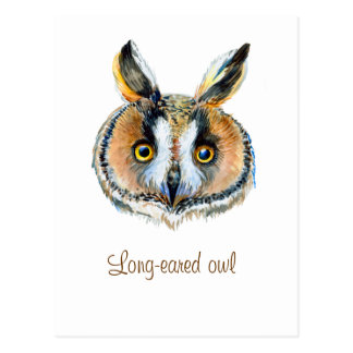 Langes ohriges Eulenporträt Postkarte