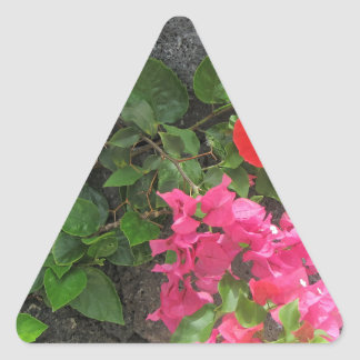Lanzarote-Lava-Felsen mit Blumen Dreieckiger Aufkleber
