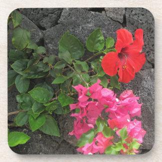 Lanzarote-Lava-Felsen mit Blumen Getränkeuntersetzer