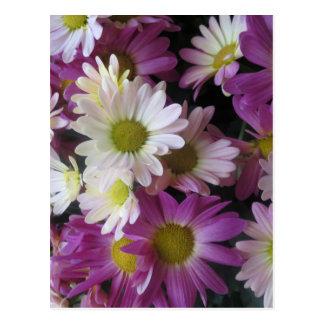 Las- Vegasschmetterlings-Garten-Blumen-Marienkäfer Postkarte
