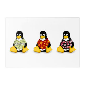 Lässige Wand-Kunst der Penguins-(3) Acryldruck