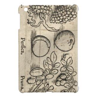 Lateinische Frucht iPad Mini Hülle