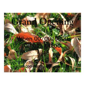 Laub und Gras 21,6 X 27,9 Cm Flyer