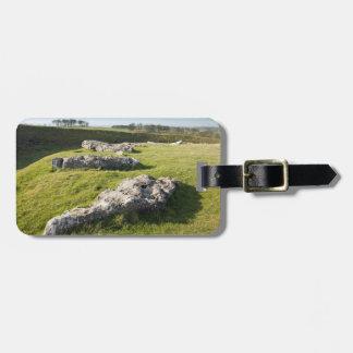Lauben-niedriger Steinkreis in Derbyshire-Foto Kofferanhänger