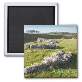 Lauben-niedriger Steinkreis in Derbyshire-Foto Quadratischer Magnet