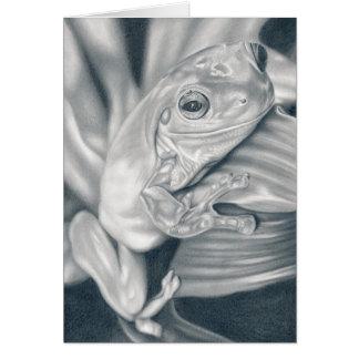 Laubfrosch - Bleistiftzeichnung Grußkarte