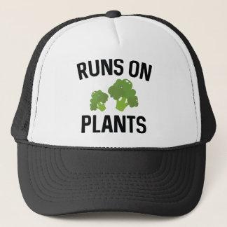 Läufe auf Pflanzen Truckerkappe