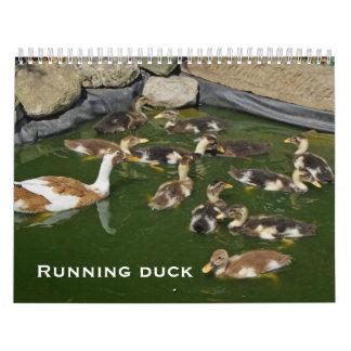 Laufende Ente Wandkalender