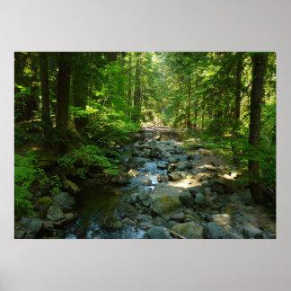 Laughingwater Nebenfluss an Nationalpark des Mount Poster