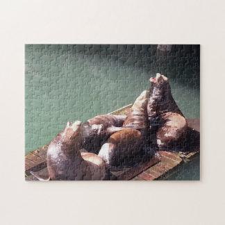Lautes Seelöwe-Puzzlespiel Puzzle