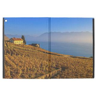 Lavaux Region, Waadt, die Schweiz
