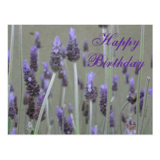 Lavendel alles Gute zum Geburtstag Postkarte