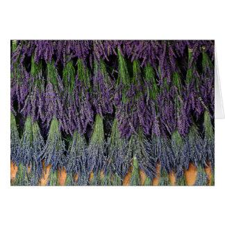 Lavendel auf trocknendem Gestell Grußkarte