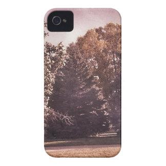 Lavendel-Benommenheit Case-Mate iPhone 4 Hüllen