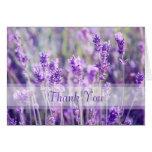 Lavendel-Blumen danken Ihnen Grußkarten
