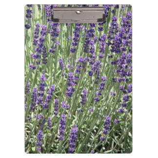 Lavendel-Blumen mit Blumen Klemmbrett