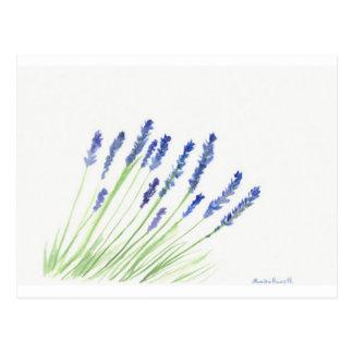 Lavendel-Blumen Postkarte