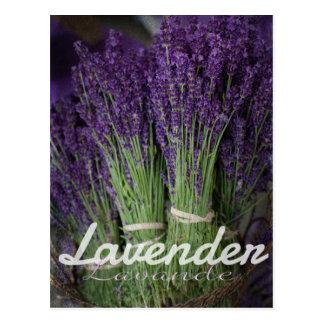 Lavendel-Bündel Postkarte