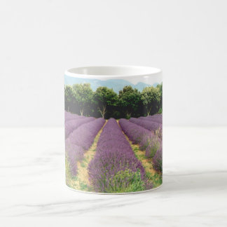 Lavendel-Feld - Drome Provencal, Frankreich Kaffeetasse