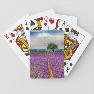 Lavendel-Feld landschaftlich, Frankreich Spielkarten
