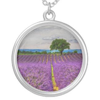 Lavendel-Feld landschaftlich, Frankreich Versilberte Kette