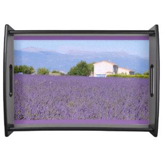 Lavendel-Felder in Valensole, Frankreich Tablett