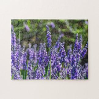 Lavendel-Fotopuzzlespiel Puzzle