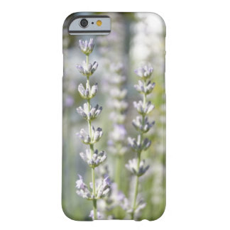 Lavendel Handyhülle Barely There iPhone 6 Hülle