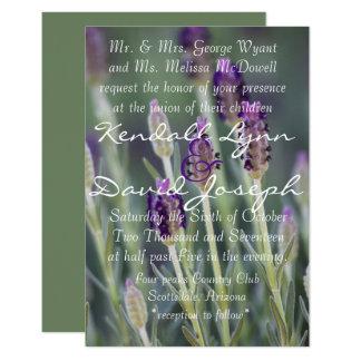 Lavendel in der Blüte Karte