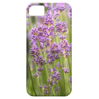 Lavendel iPhone 5 Etui